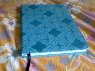 Olivia's journal